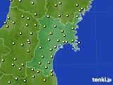 宮城県のアメダス実況(気温)(2017年05月24日)