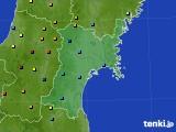 宮城県のアメダス実況(積雪深)(2018年02月01日)