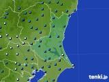 茨城県のアメダス実況(気温)(2019年02月15日)