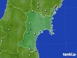 2020年05月20日の宮城県のアメダス(降水量)