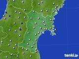 宮城県のアメダス実況(風向・風速)(2020年05月21日)