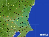 茨城県のアメダス実況(気温)(2020年07月25日)