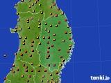 岩手県のアメダス実況(気温)(2020年08月04日)