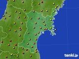 宮城県のアメダス実況(気温)(2020年08月22日)