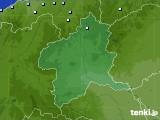群馬県のアメダス実況(降水量)(2021年01月01日)