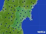 宮城県のアメダス実況(気温)(2021年01月01日)
