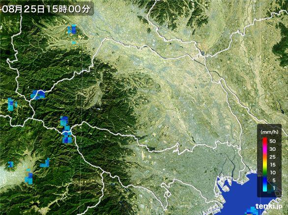 埼玉県の雨雲レーダー(2016年08月25日)