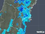 2018年05月31日の宮城県の雨雲の動き