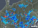 2018年08月13日の長野県の雨雲レーダー