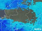2019年01月31日の岐阜県の雨雲の動き