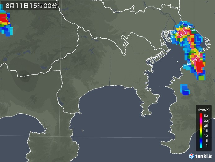 神奈川県の雨雲の動き(2019年08月11日)
