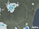 2020年05月30日の栃木県の雨雲レーダー