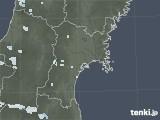 2020年07月30日の宮城県の雨雲レーダー