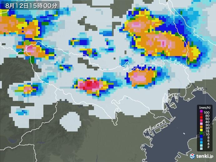 東京都の雨雲レーダー(2020年08月12日)
