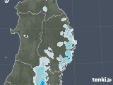 2020年09月01日の岩手県の雨雲レーダー