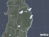 2020年09月08日の岩手県の雨雲レーダー