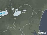 2021年05月31日の栃木県の雨雲レーダー