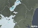 2021年06月13日の栃木県の雨雲レーダー