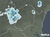 2021年07月19日の栃木県の雨雲レーダー