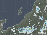 2021年07月20日の新潟県の雨雲レーダー