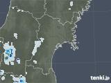 2021年07月20日の宮城県の雨雲レーダー