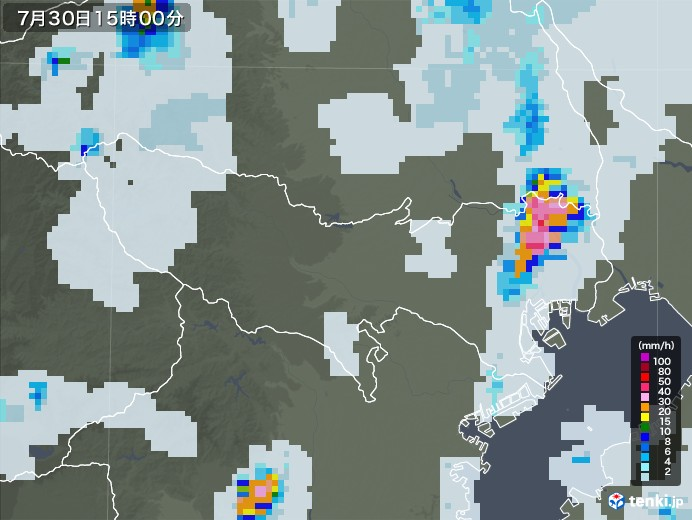 東京都の雨雲レーダー(2021年07月30日)