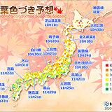 2020年紅葉色づき予想 日本気象協会発表