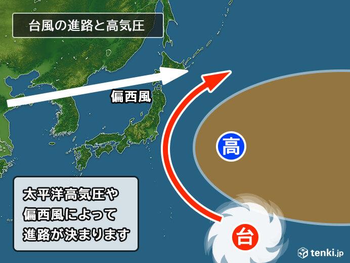 なぜ南へ?異例コースの台風14号