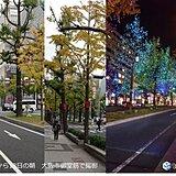 京都など 関西各地では週末は澄んだ青空に紅葉が映える