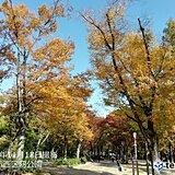 関西 18日は季節外れの暖かさ、夏日の所も?