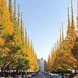 東京都心 15年ぶり 11月に10日連続降水なしか