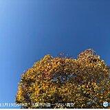 大阪、晩秋に25度超えの夏日 20日まで暖かい関西