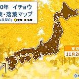 東京でイチョウが黄葉 市街地も色づきが進む
