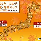 東京でカエデが紅葉 関東で最も早く