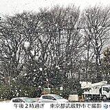 東京都内で大粒の雪 都心では4日ぶりに一桁の最高気温