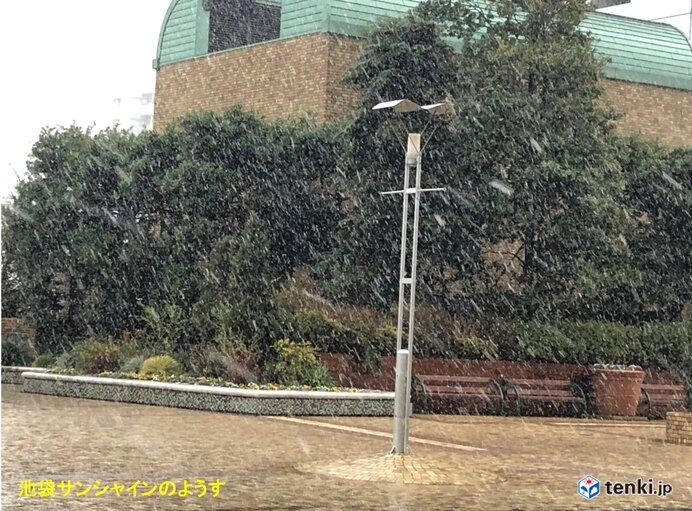 東京23区で雪 都心も1℃台 関東南部の雪いつまで? 積雪は?_画像