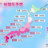 2021年桜開花予想 全国的に平年より早く トップは福岡で3月18日!