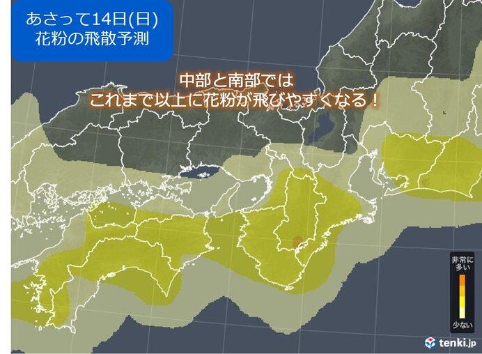 関西 週末は花粉前線やや北上_画像