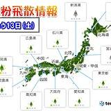 13日 花粉飛散情報 九州北部で「やや多い」