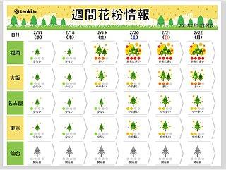 スギ花粉飛散中 今週末は九州で非常に多く 関東でもやや多く飛ぶ予想