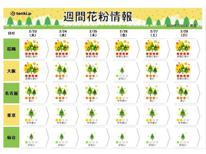 あすも九州から東海は花粉が大量飛散 今週はピークを迎える所も_画像