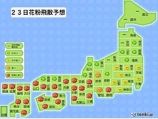 あすも九州から東海は花粉が大量飛散 今週はピークを迎える所も
