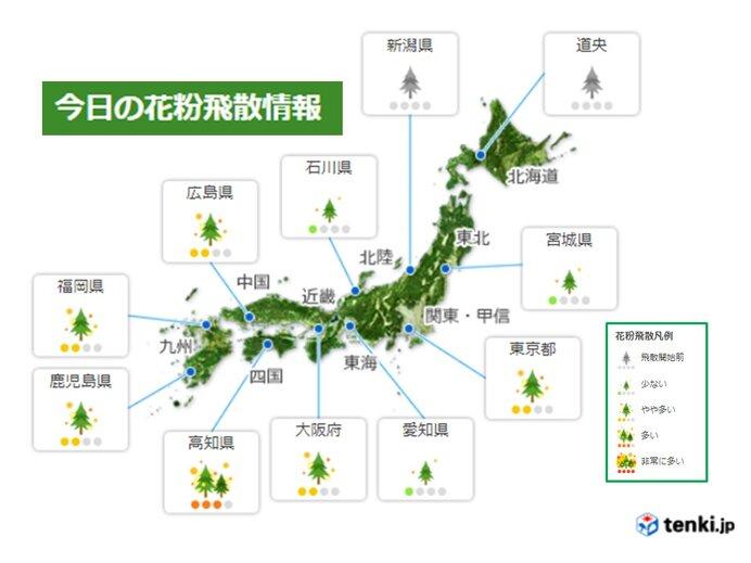 花粉飛散 九州から関東で多く、非常に多い所も