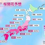 2021年桜開花予想 トップは福岡など3月16日 東京3月17日