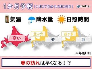 北海道の1か月予報と桜開花予想 落雪やなだれに要注意!