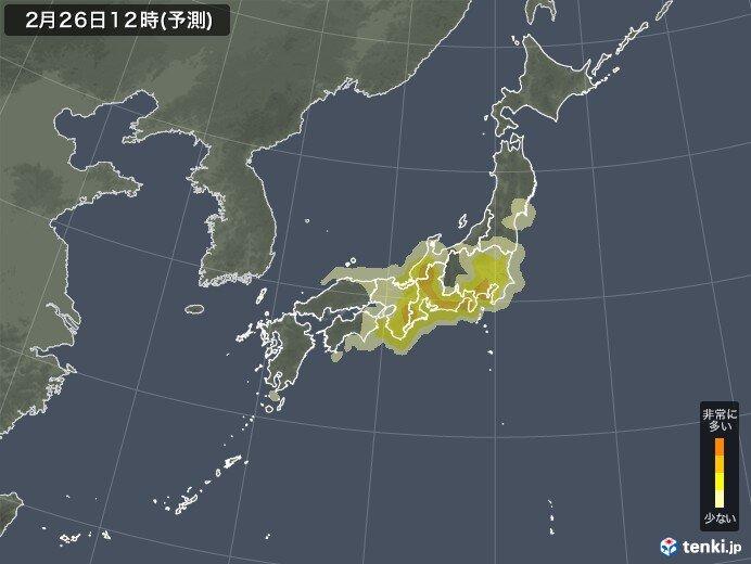 雨や曇りでもスギ花粉飛散 東海・関東中心に引き続き花粉対策を