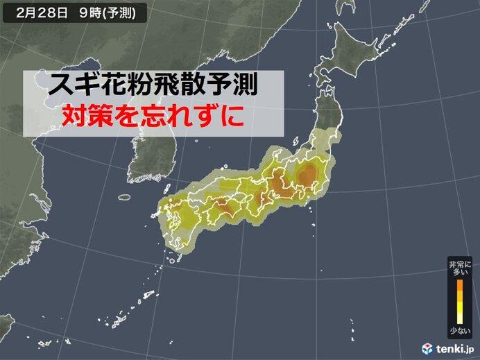 スギ花粉 九州~関東でピーク 今日は多い? 「非常に多い」日はいつ?