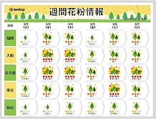気になるスギ花粉 今週は「非常に多く」飛ぶ日も 各地のピークいつまで?
