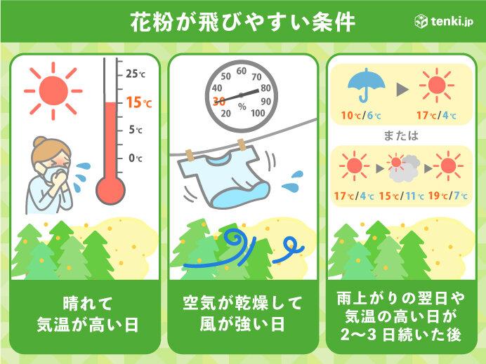 スギ花粉 あすは万全の対策を 来週は高温傾向で大量飛散が続く_画像