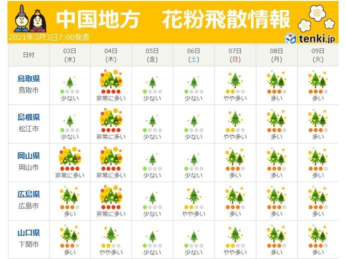 中国地方はスギ花粉飛散の最盛期
